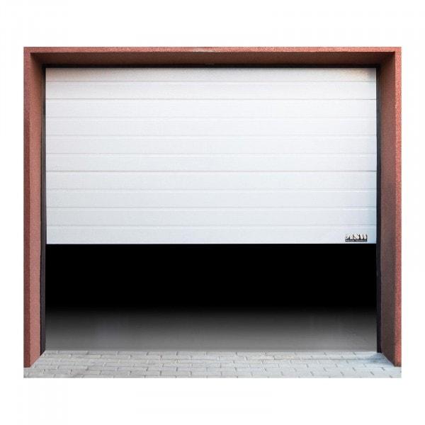 Außenansicht von Sektionaltor - 2500 x 2125 mm