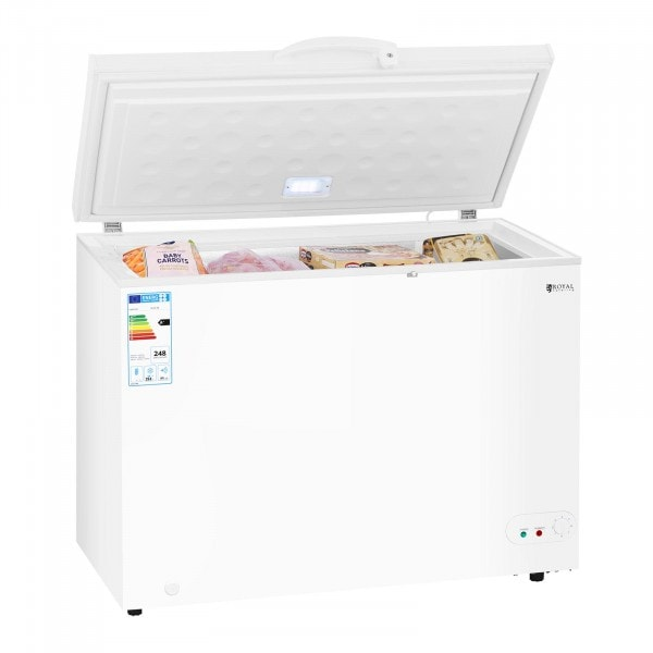 Factory seconds Commercial Freezer - 252 L