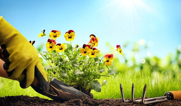 Gartenbedarf